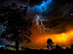 lightning-sky-trees-outlines-stars-bad-weather-night-orange-birds